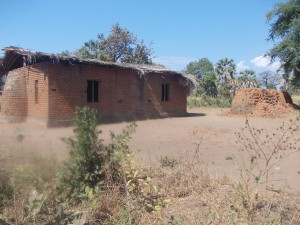 image29 image29 - Malawi Relief Fund UK