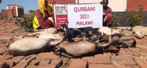 Qurbani 2021 26 Qurbani For Eid-Ul-Adha - Malawi Relief Fund UK